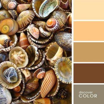 Цветовете в природата море