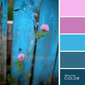 Цветовете в природата цвят