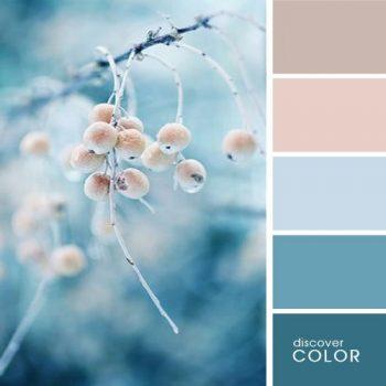 Цветовете в природата зима
